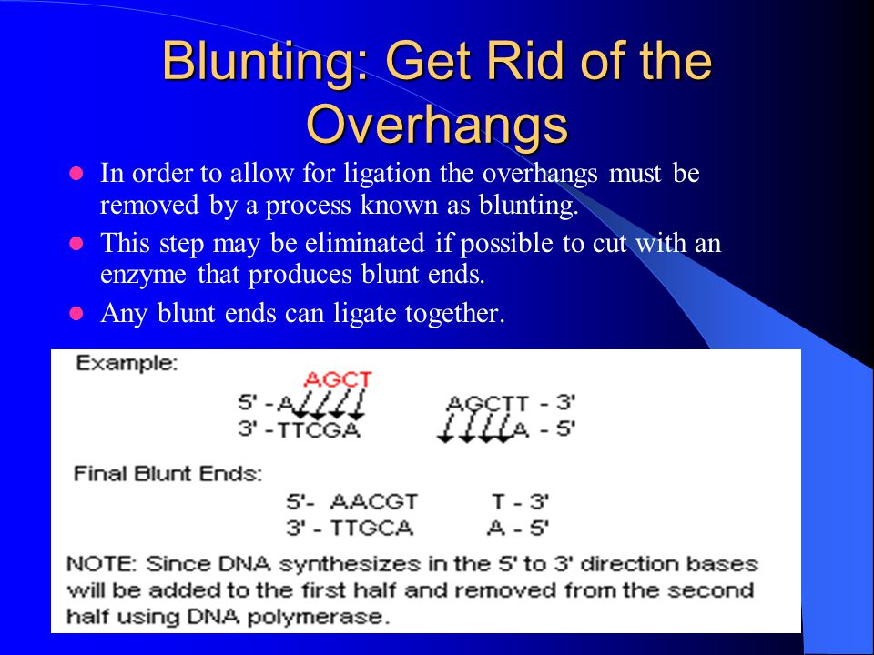 Blunting: Get Rid of the Overhangs