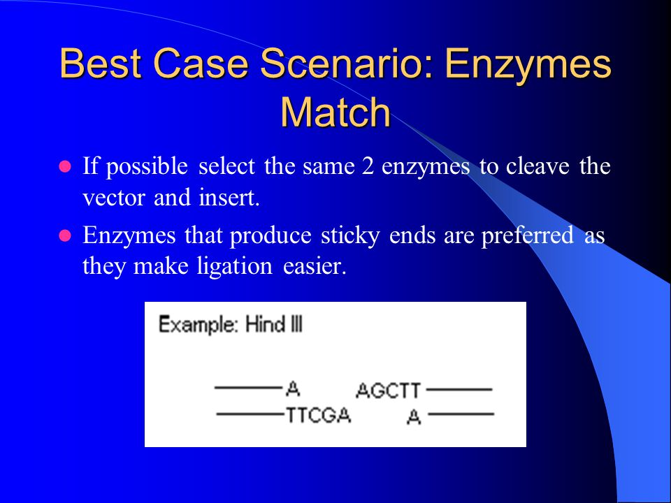 Best Case Scenario: Enzymes Match