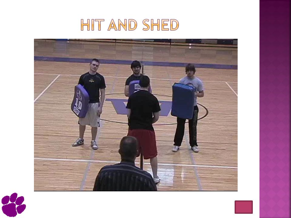 Hit and Shed