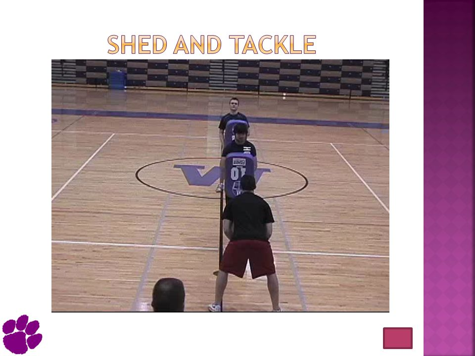 Shed and tackle