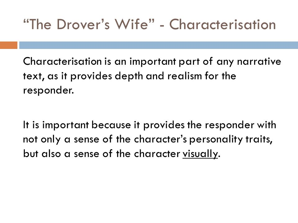 The Drover's Wife - Characterisation