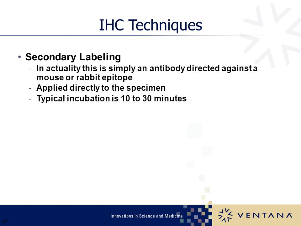 IHC Techniques Secondary Labeling