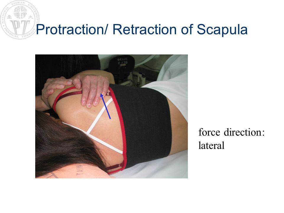 Protraction/ Retraction of Scapula