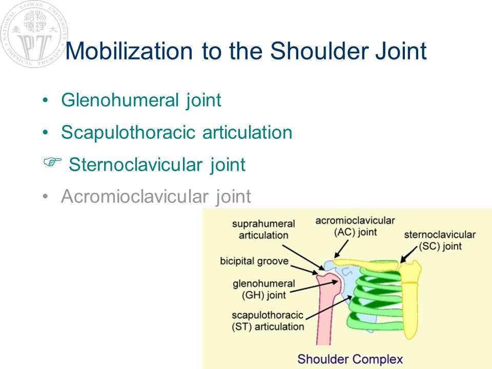 Mobilization to the Shoulder Joint