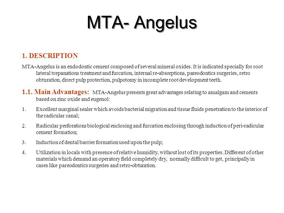 MTA- Angelus 1. DESCRIPTION