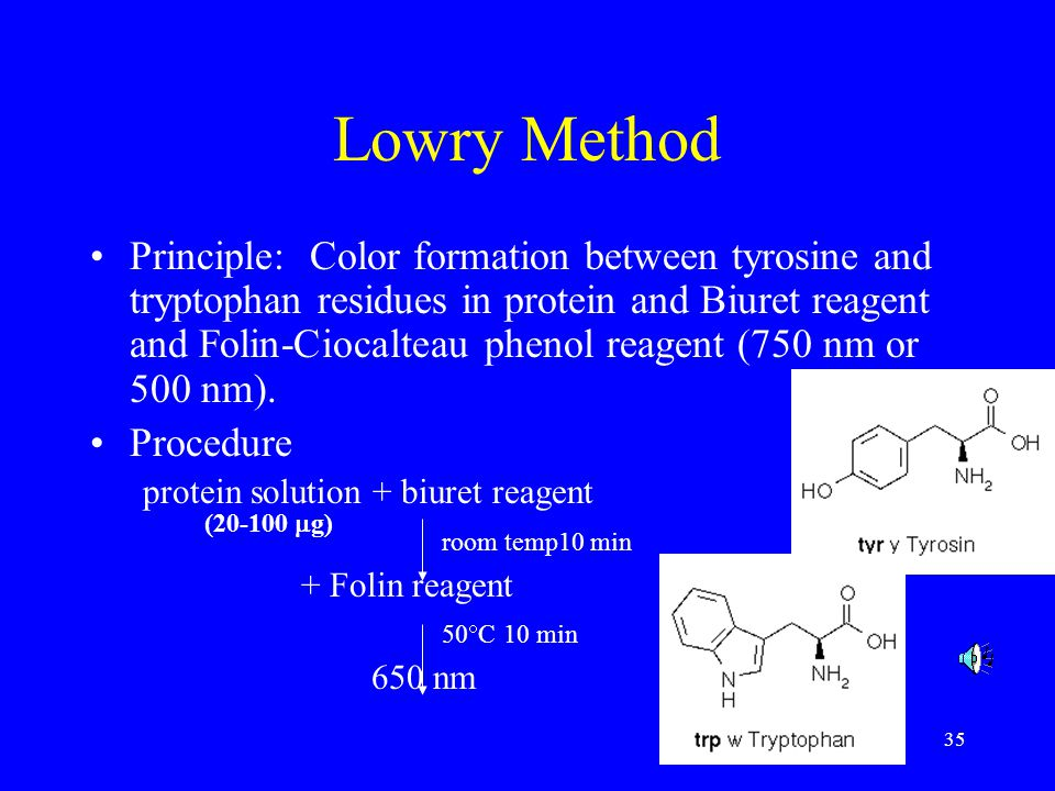 Lowry Method