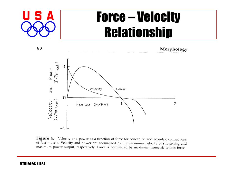 Force – Velocity Relationship