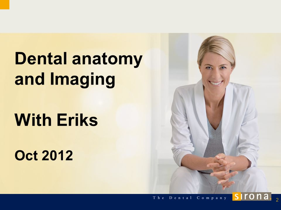 Dental anatomy and Imaging With Eriks Oct 2012