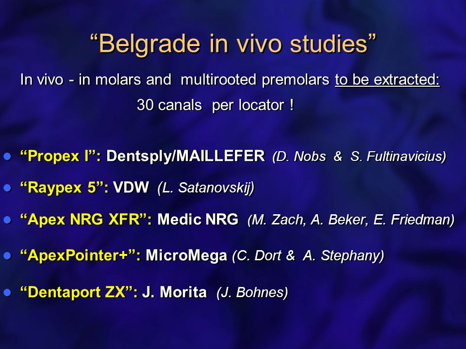 Belgrade in vivo studies