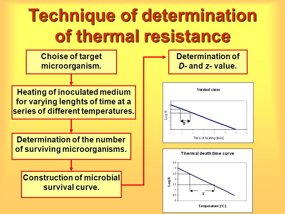 Technique of determination of thermal resistance