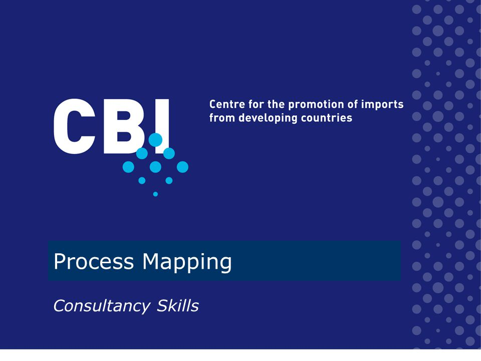 Process Mapping Consultancy Skills