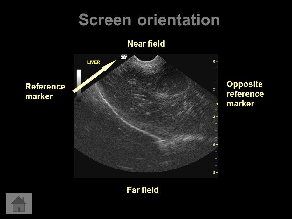 Screen orientation Near field Opposite reference marker