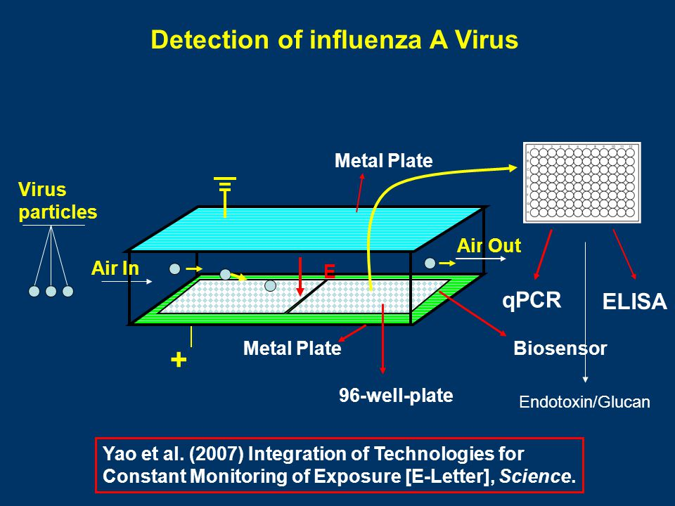 Detection of influenza A Virus