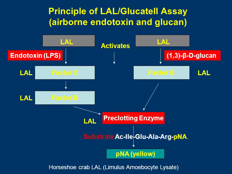 Principle of LAL/Glucatell Assay (airborne endotoxin and glucan)