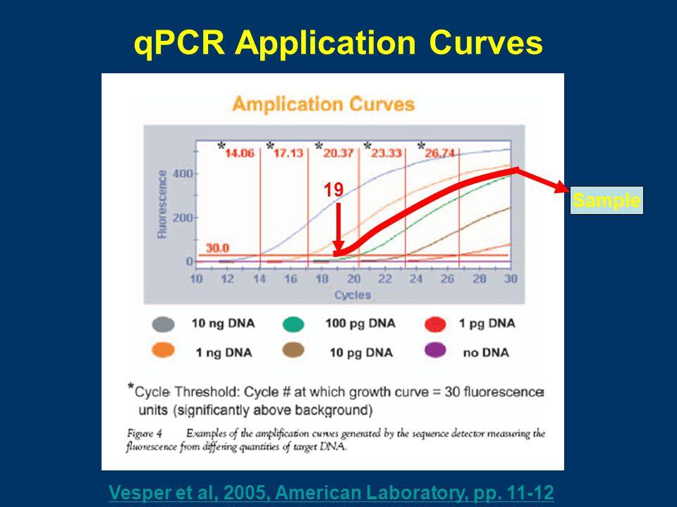 qPCR Application Curves