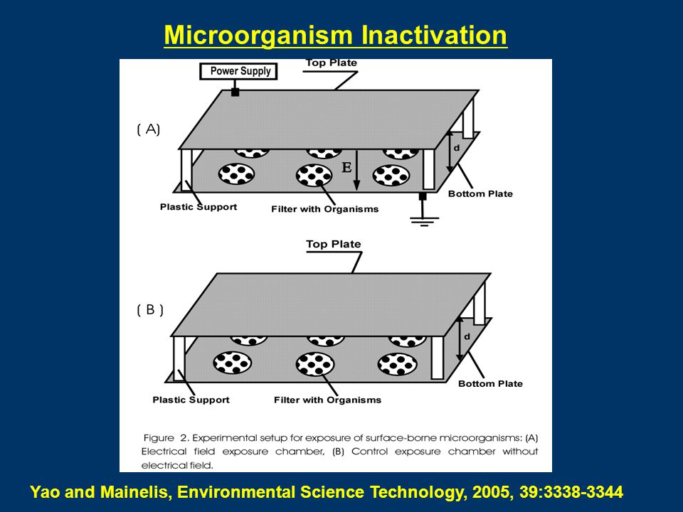 Microorganism Inactivation