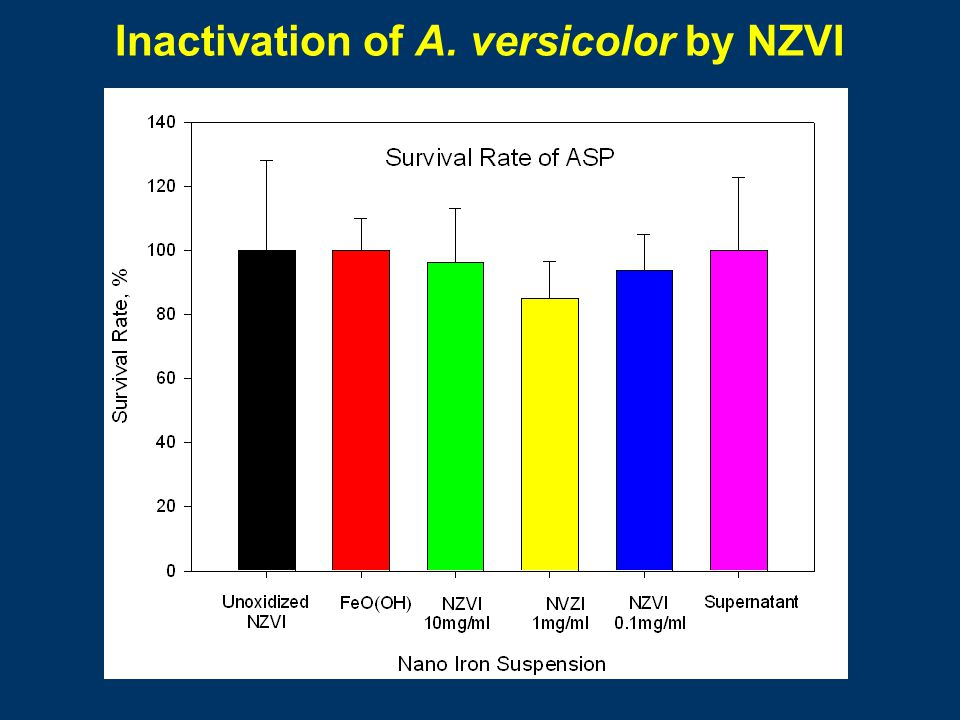 Inactivation of A. versicolor by NZVI