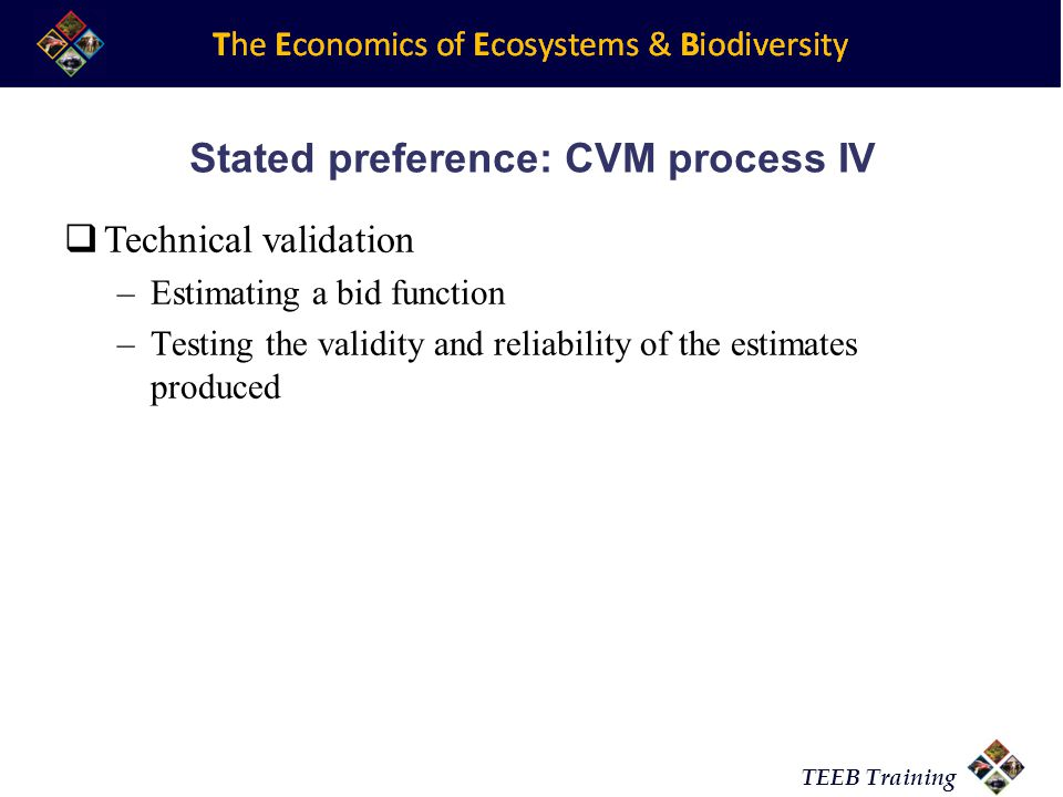 Stated preference: CVM process IV