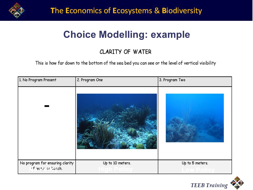 Choice Modelling: example