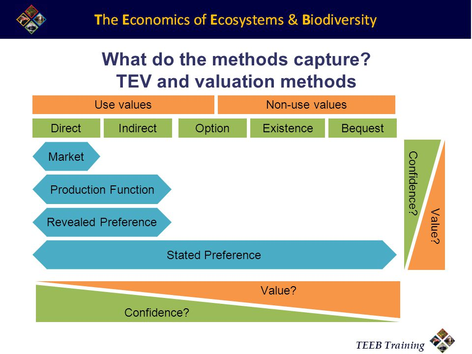 What do the methods capture TEV and valuation methods