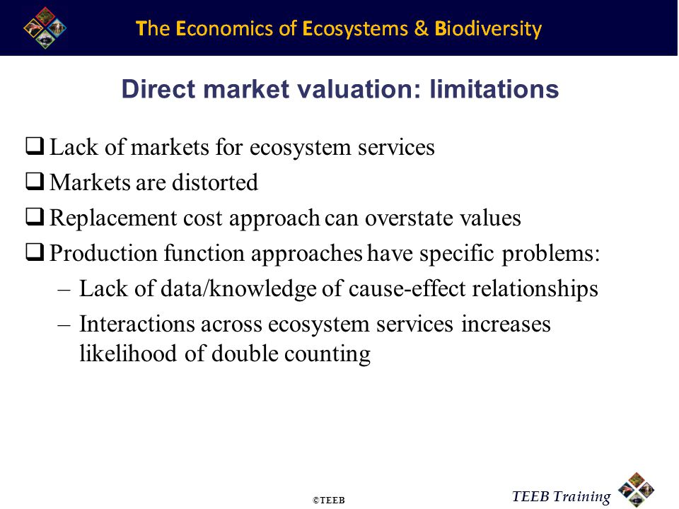 Direct market valuation: limitations