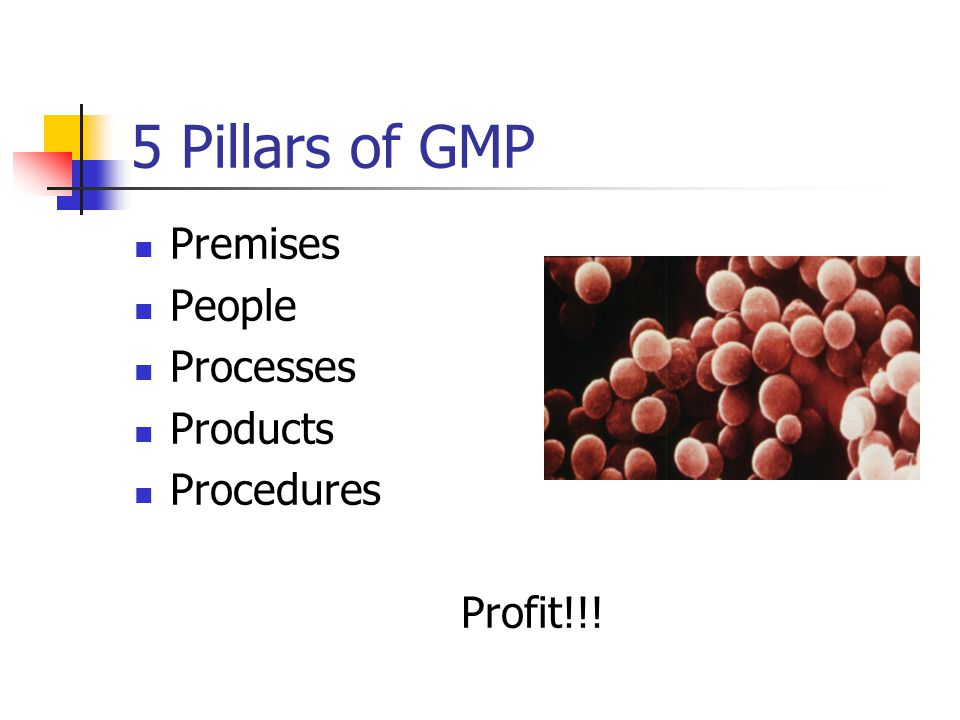 5 Pillars of GMP Premises People Processes Products Procedures