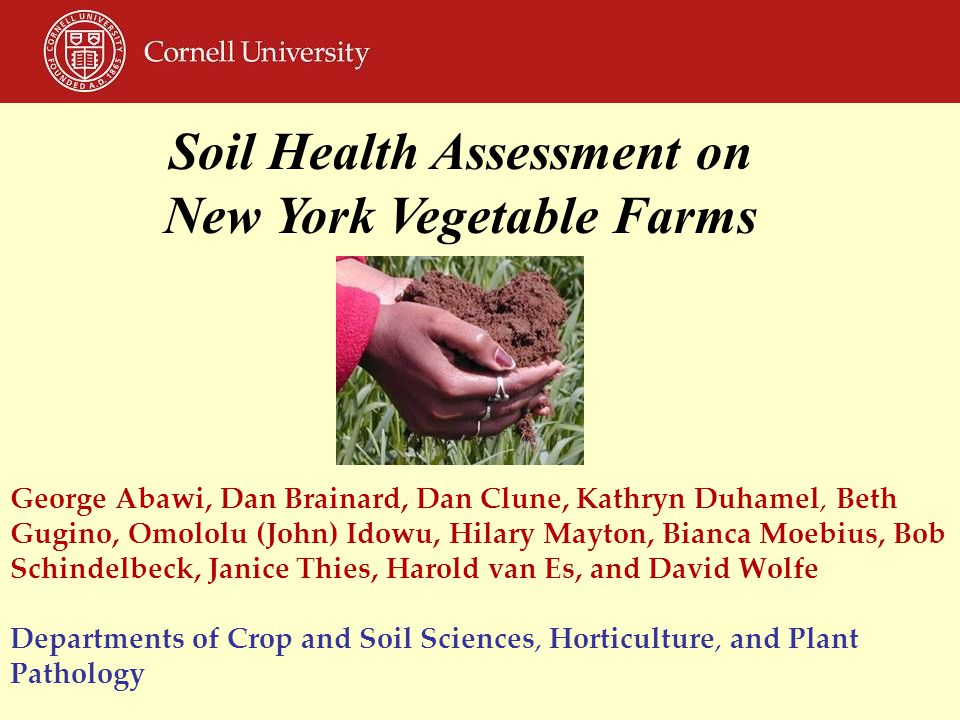 Soil Health Assessment on New York Vegetable Farms