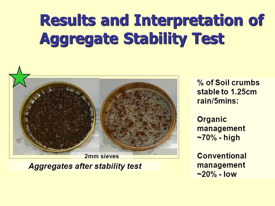 Results and Interpretation of Aggregate Stability Test