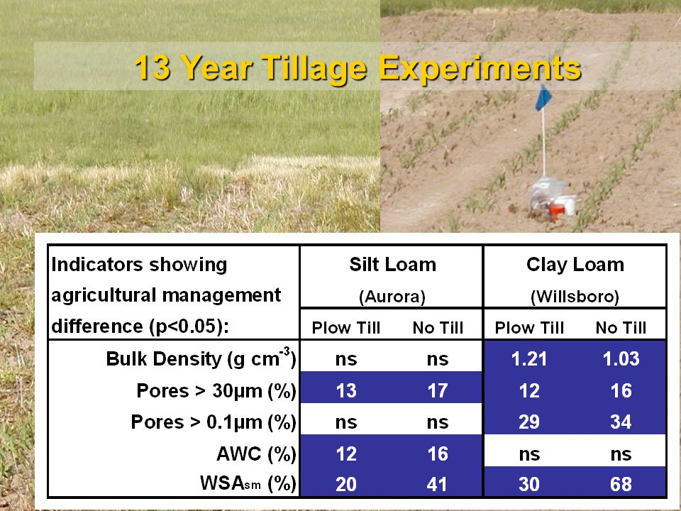 13 Year Tillage Experiments