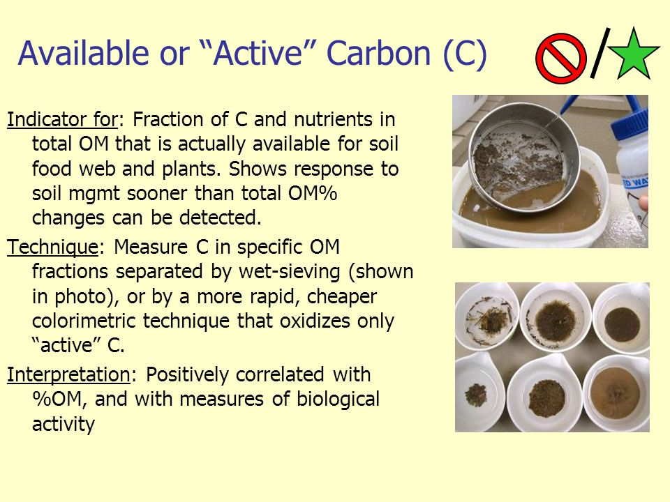 Available or Active Carbon (C)