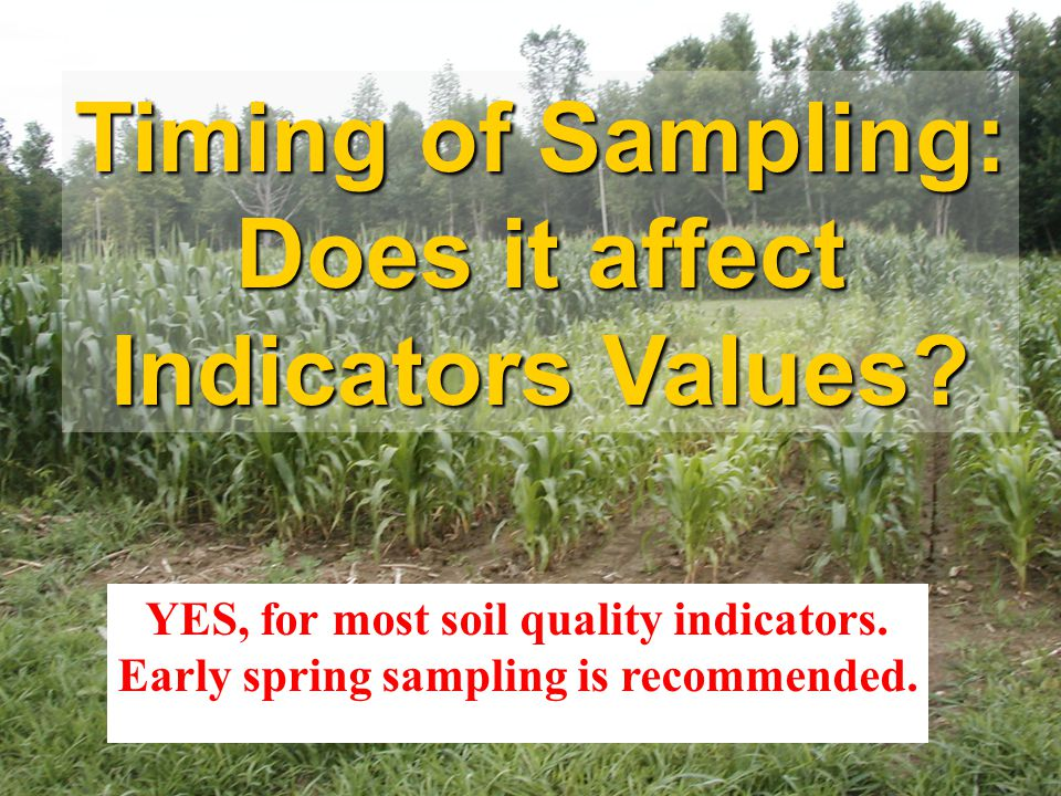Timing of Sampling: Does it affect Indicators Values