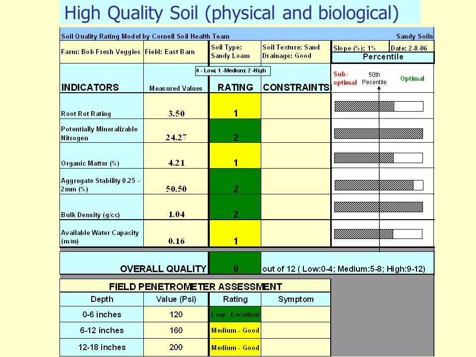 High Quality Soil (physical and biological)