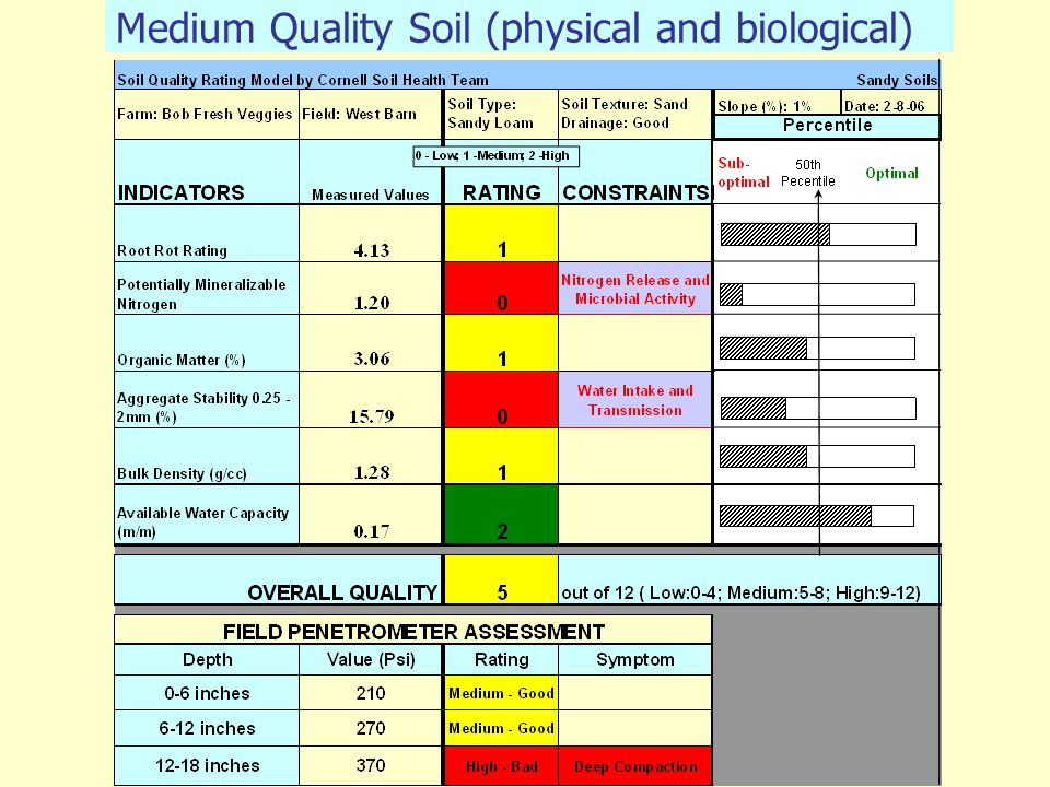 Medium Quality Soil (physical and biological)
