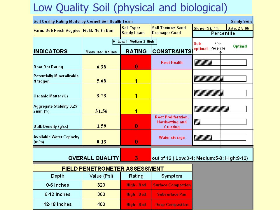 Low Quality Soil (physical and biological)