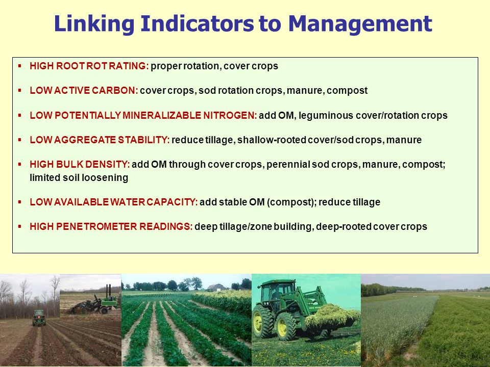 Linking Indicators to Management