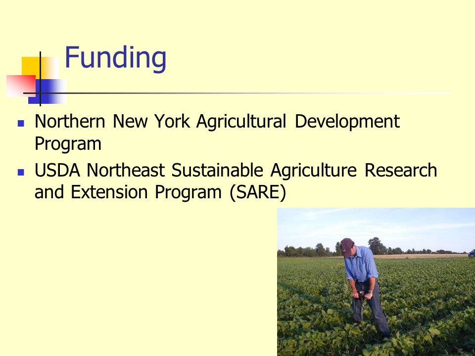 Funding Northern New York Agricultural Development Program
