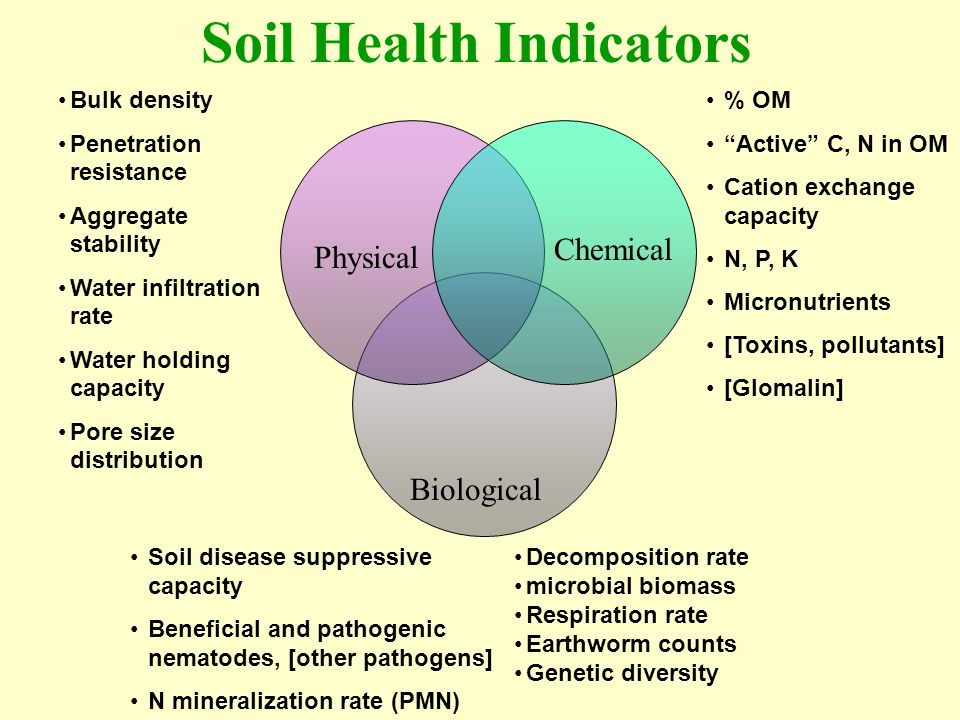 Soil Health Indicators