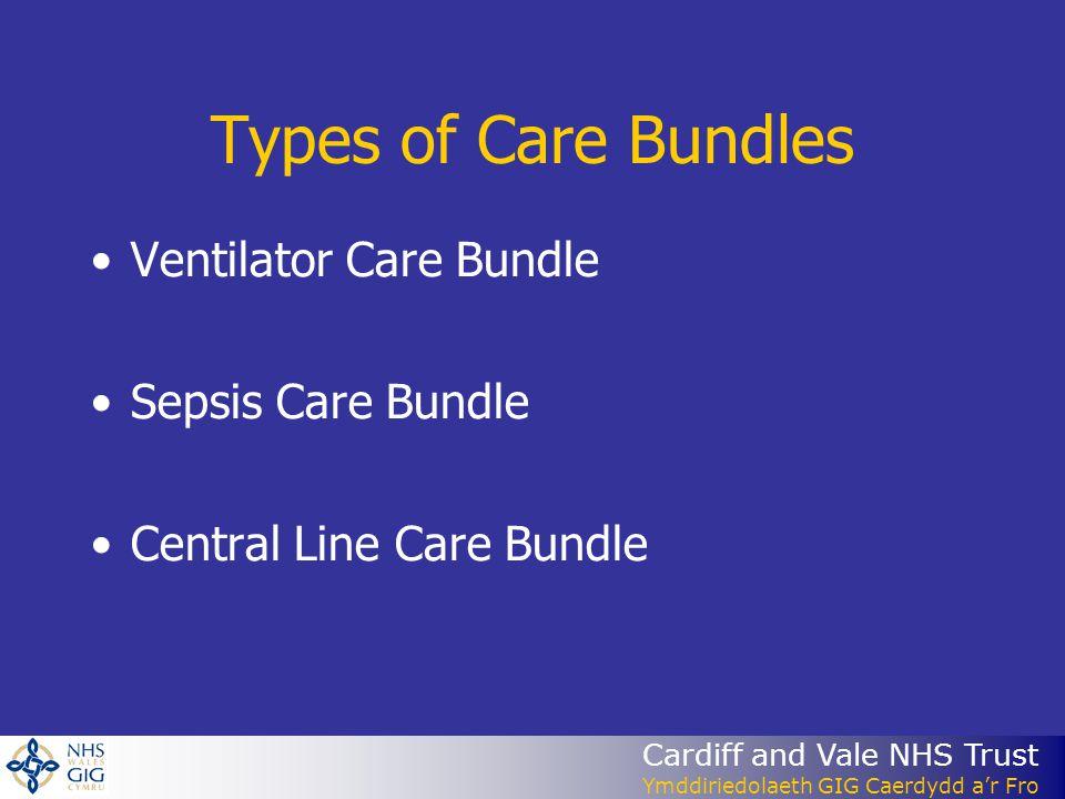 Types of Care Bundles Ventilator Care Bundle Sepsis Care Bundle
