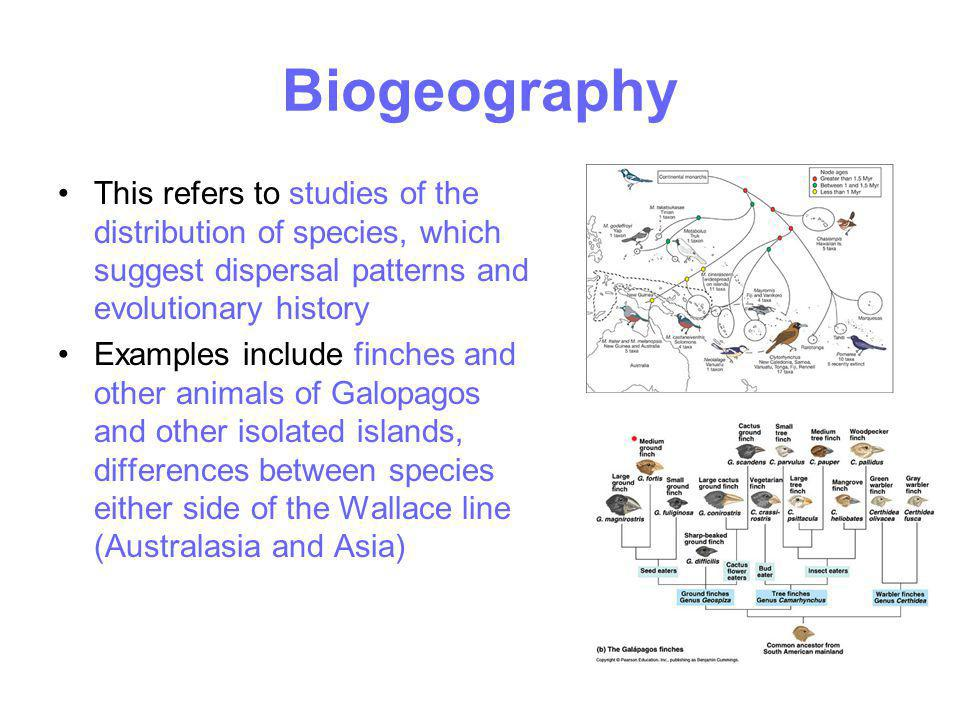 Biogeography This refers to studies of the distribution of species, which suggest dispersal patterns and evolutionary history.