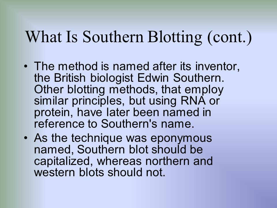 What Is Southern Blotting (cont.)