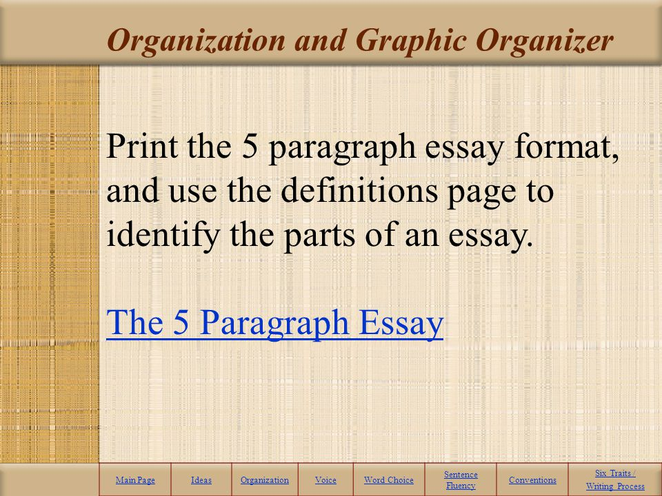 Organization and Graphic Organizer