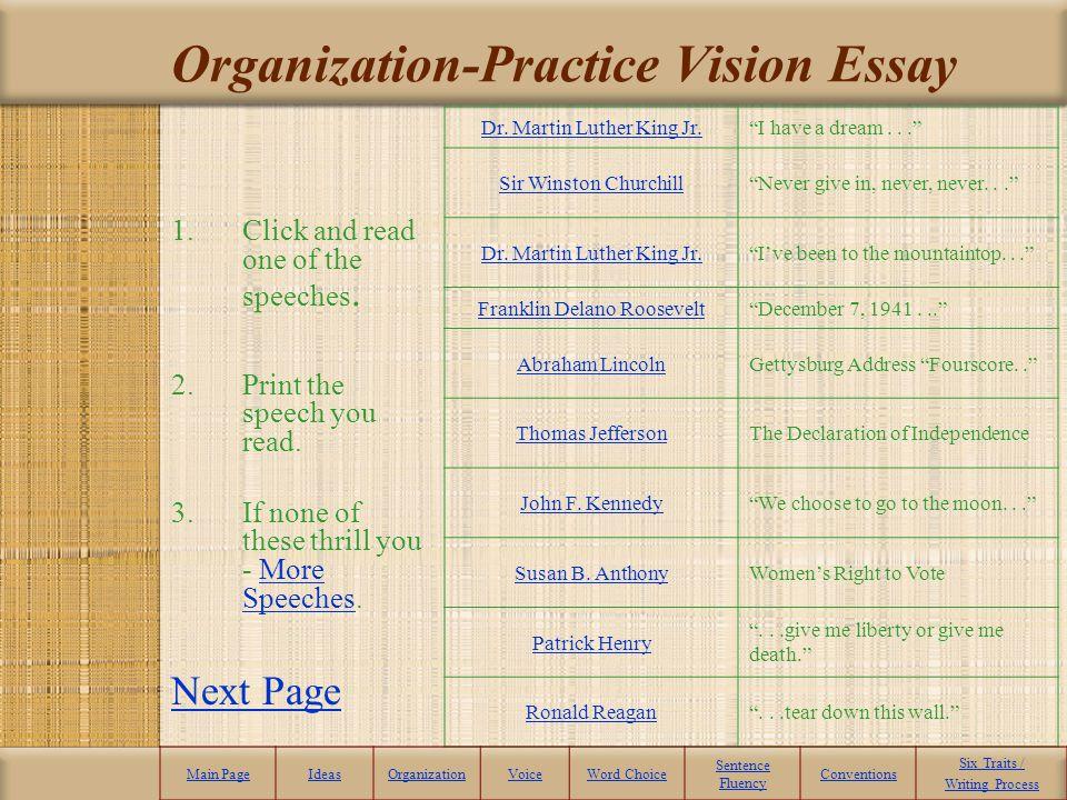 Organization-Practice Vision Essay
