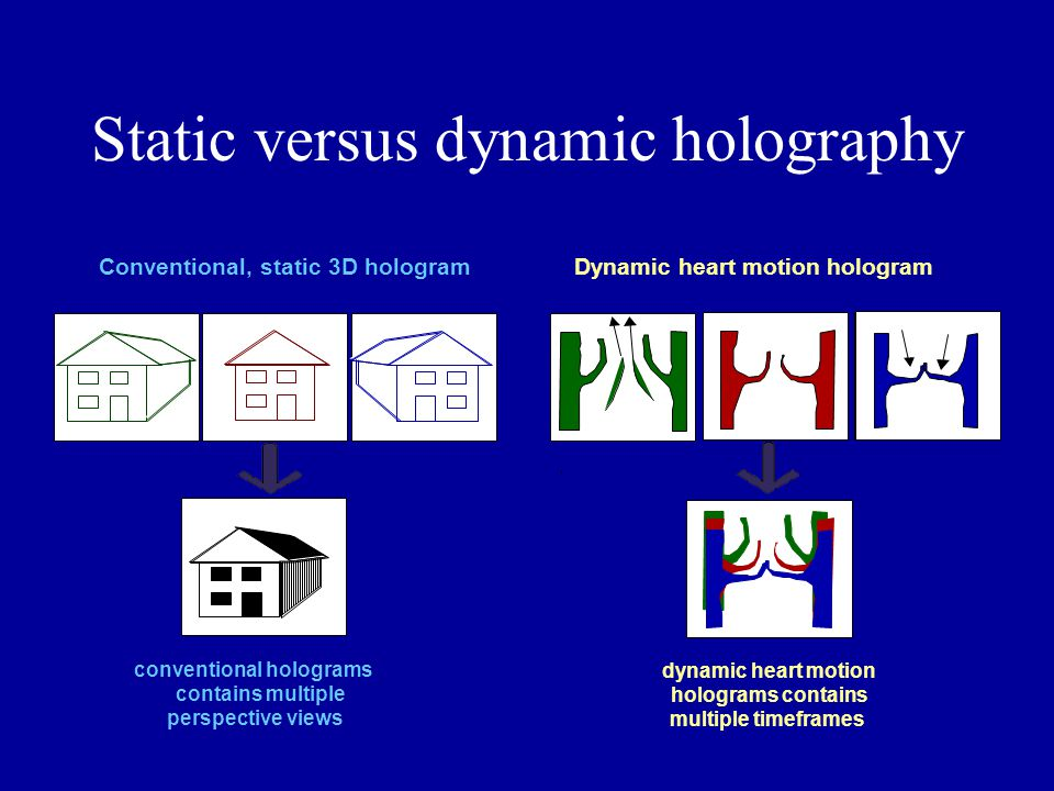 Static versus dynamic holography