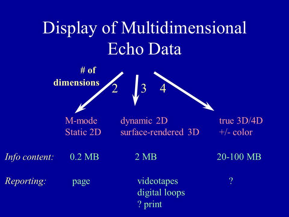 Display of Multidimensional Echo Data
