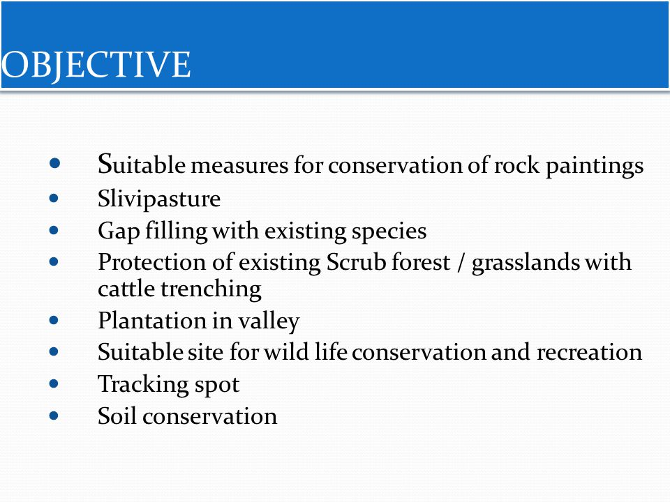 OBJECTIVE Suitable measures for conservation of rock paintings
