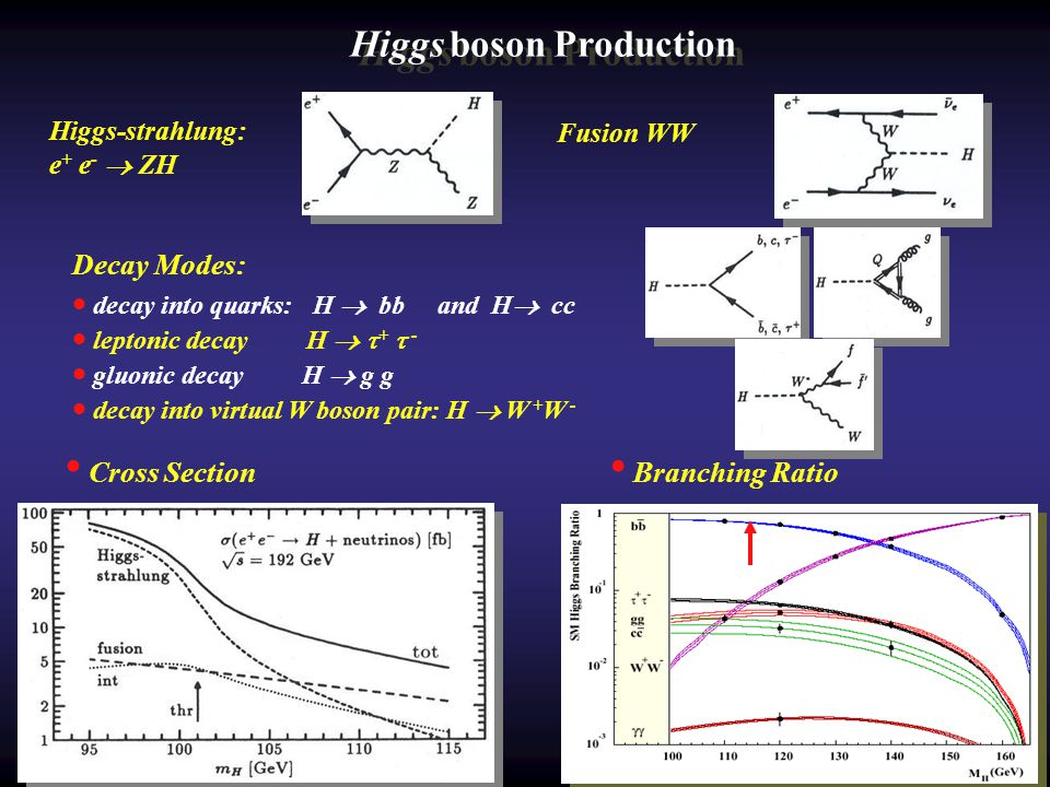 Higgs boson Production