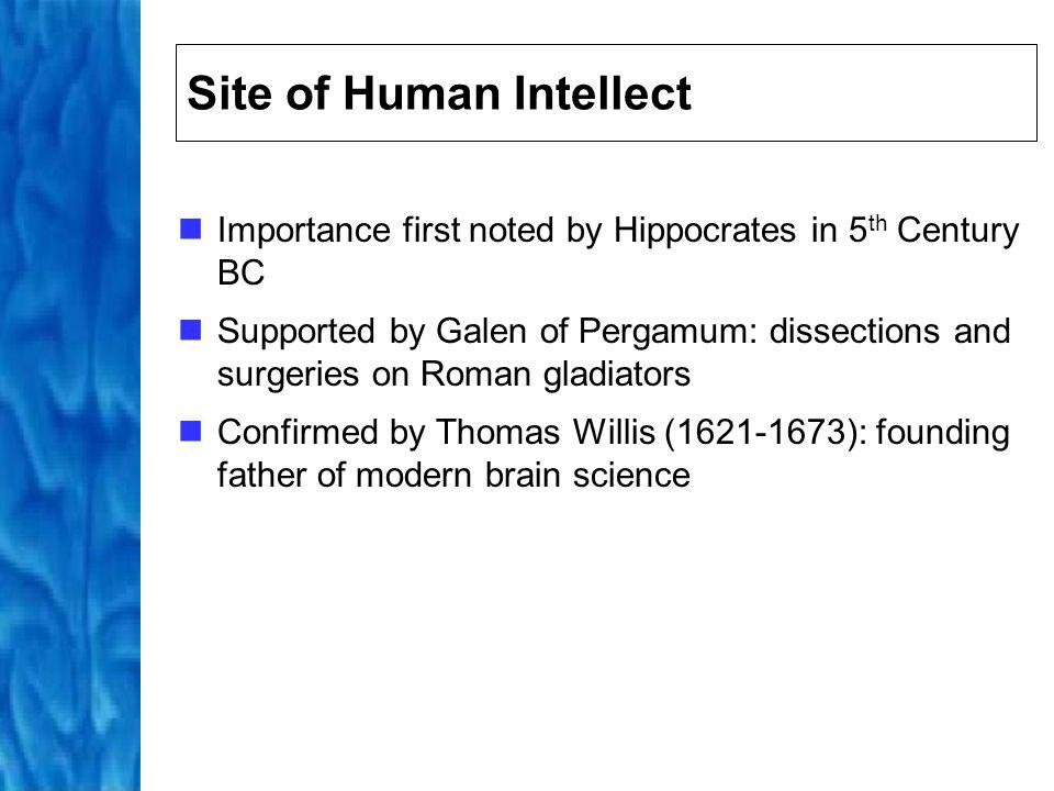 Site of Human Intellect