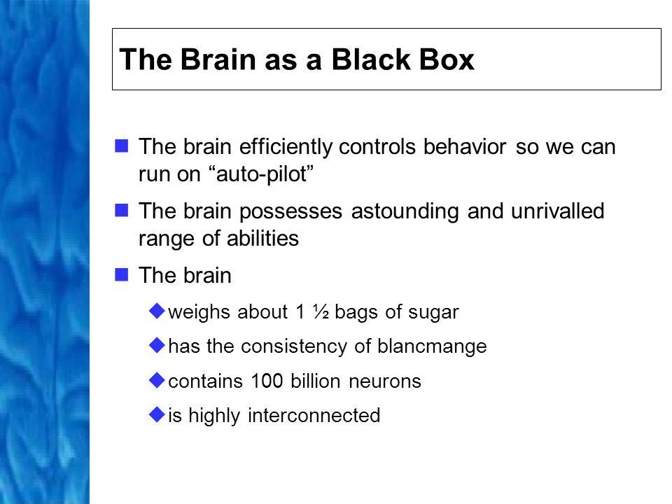 The Brain as a Black Box The brain efficiently controls behavior so we can run on auto-pilot