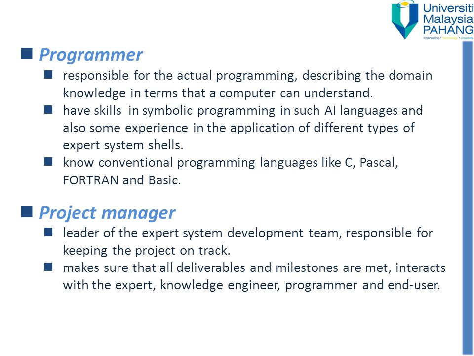 Programmer Project manager