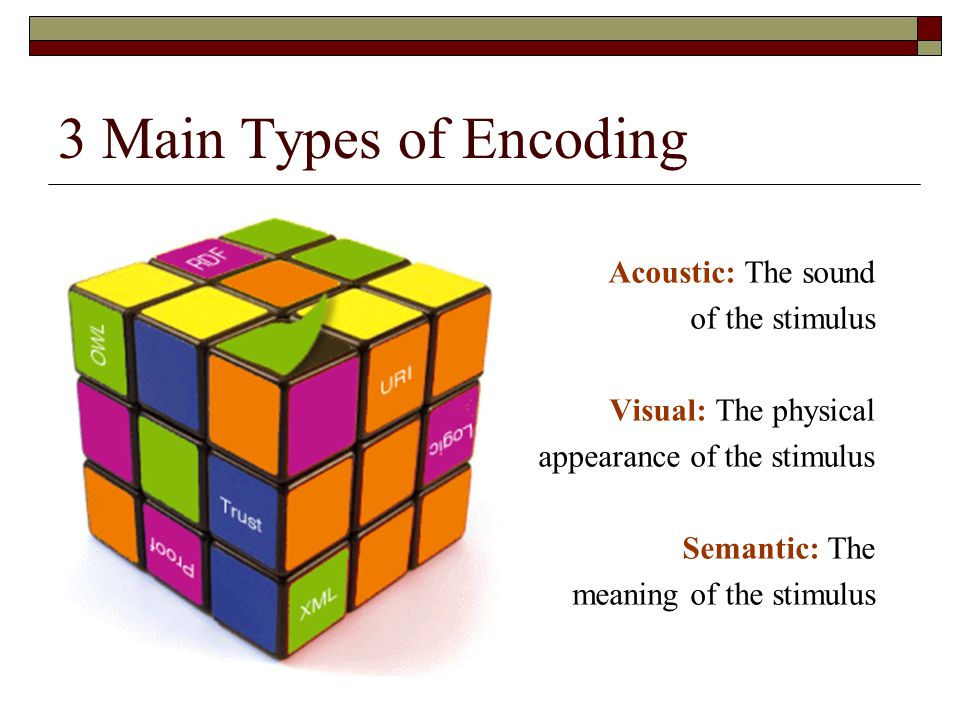 3 Main Types of Encoding Acoustic: The sound of the stimulus